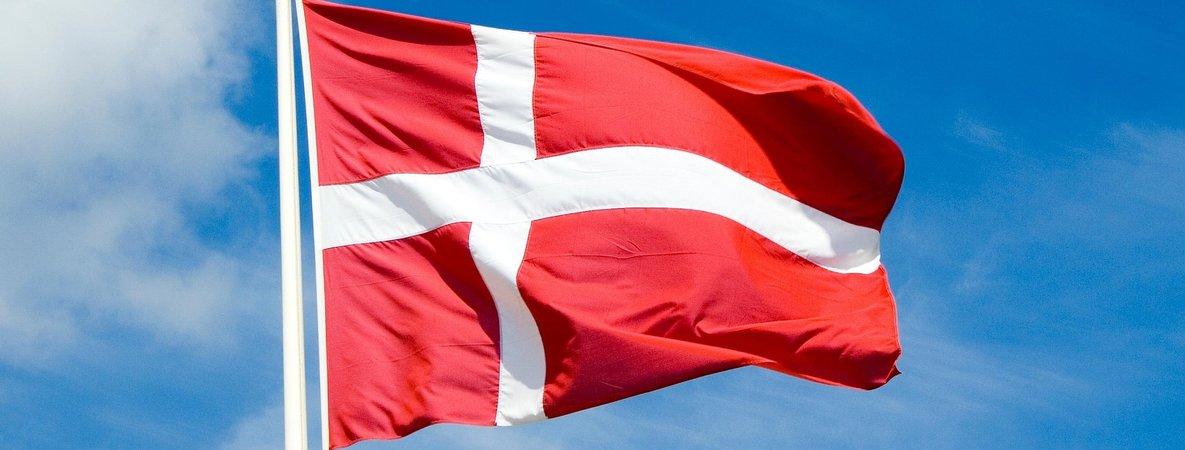 Dannebrog Flagge 150cm x 250cm